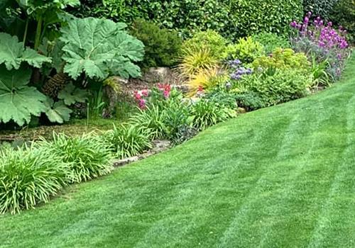 Glenn Humphries Landscaping Truro Garden Maintenance 1